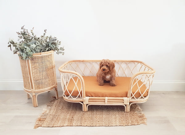 Bella Rattan Dog Bed AUGUST DELIVERY