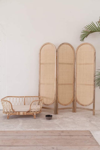 Fern Rattan Privacy Screen PRE ORDER FOR FEBRUARY