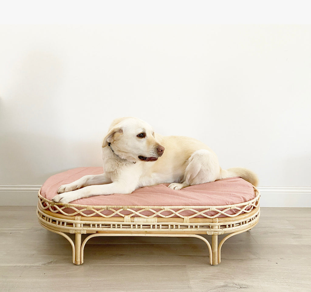 Frankie Dog Bed