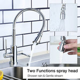 Hapilife Modern Kitchen Sink Mixer Tap with Flexible Spray Dual Lever Chrome