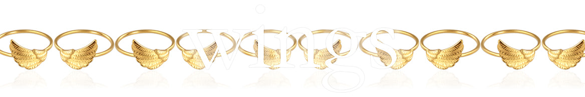 Wing jewellery collection banner