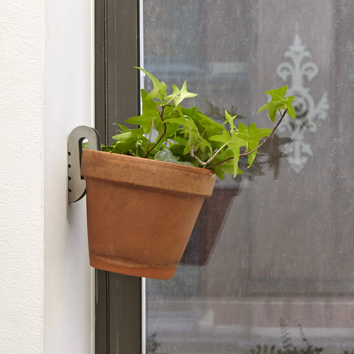 Floating Plant Hangers - Set Of 3