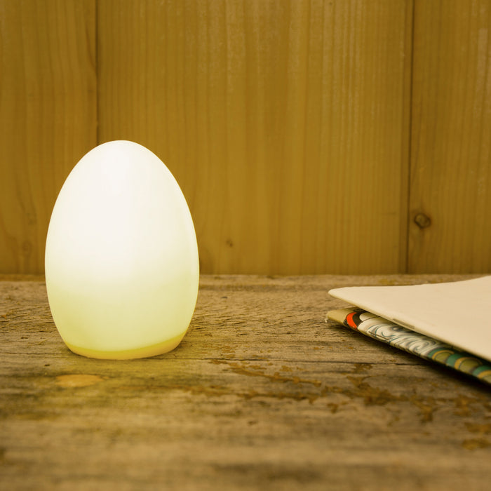 Egg LED Light