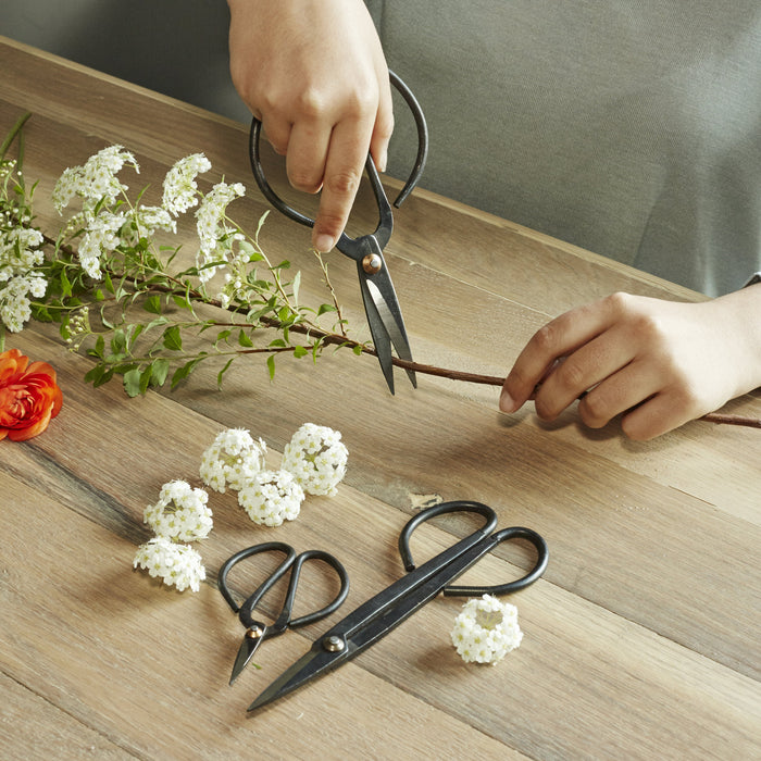 Scissor Set For Garden - 3 Sizes Of Carbon Steel Shears