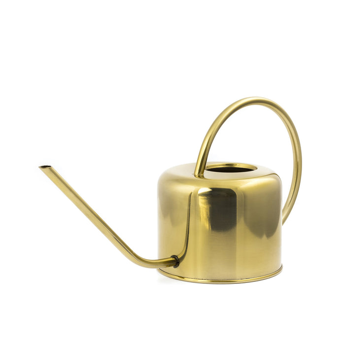 Vintage Watering Can - Watering Your Garden Or Houseplants