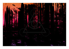 Limited Edition Print - Mourning At Sunset