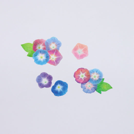 Bande Morning Glory Washi Roll Sticker (Limited Edition) - Cityluxe