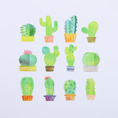 Bande Cactus Roll Sticker