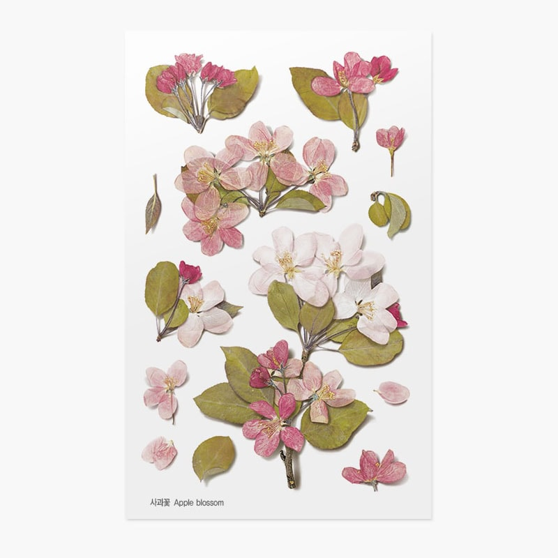 Appree Pressed Flower Sticker Apple Blossom