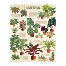 Load image into Gallery viewer, Cavallini Puzzle House Plants