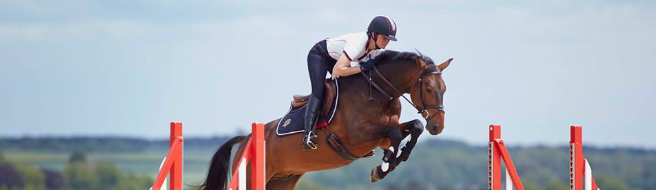 Horse jumping with the rider wearing a Champion riding hat