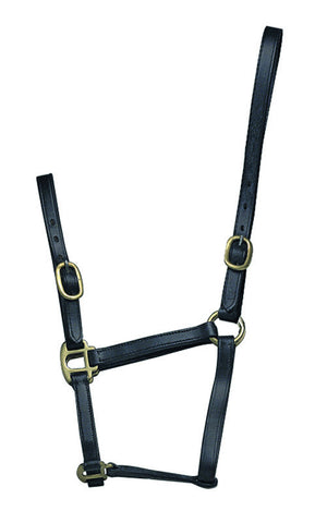 Blenheim Adjustable Leather Foal Headcollar