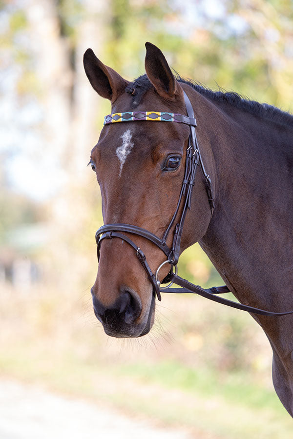 Blenheim Leather Polo Browband