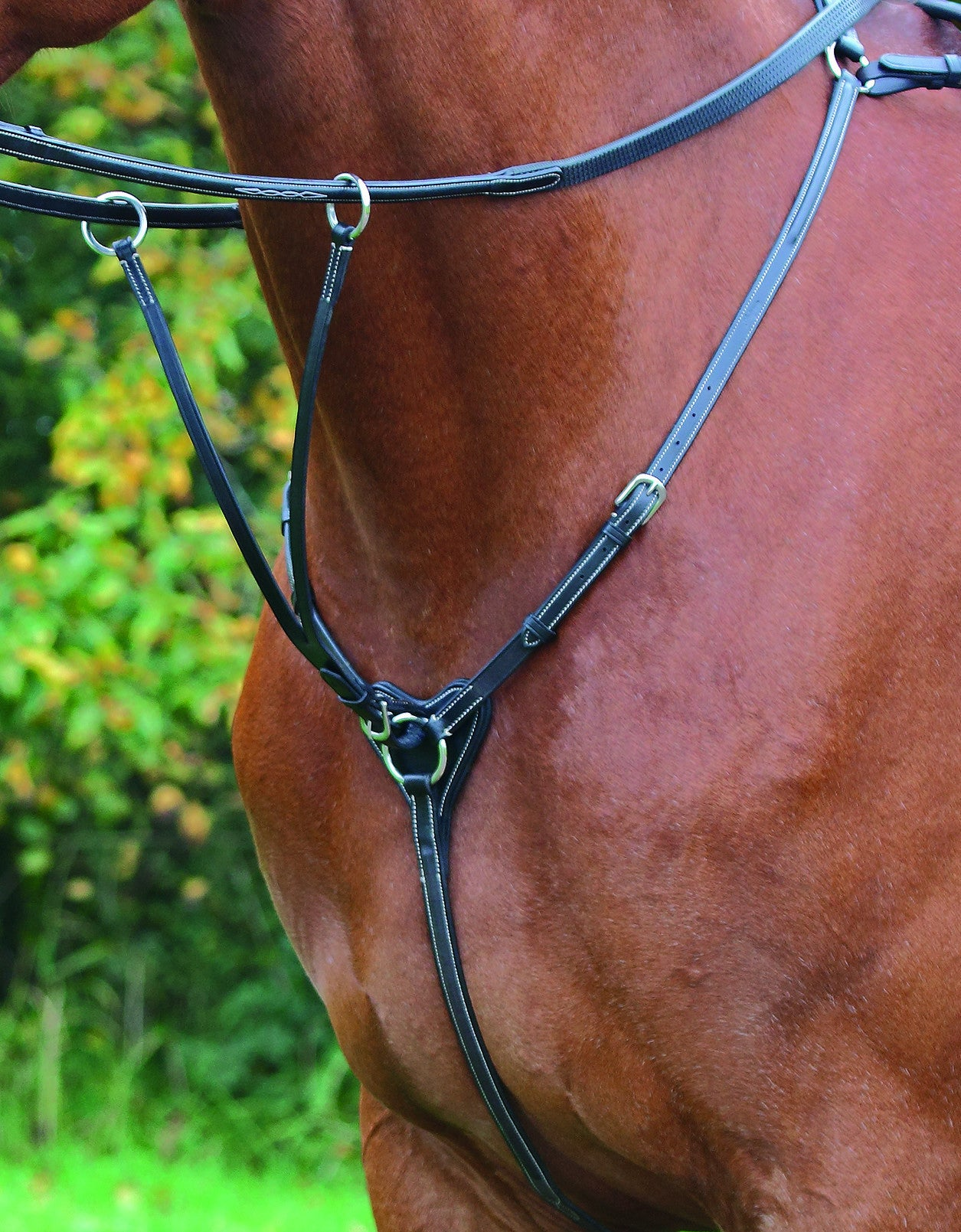 Shires Avignon Breastplate
