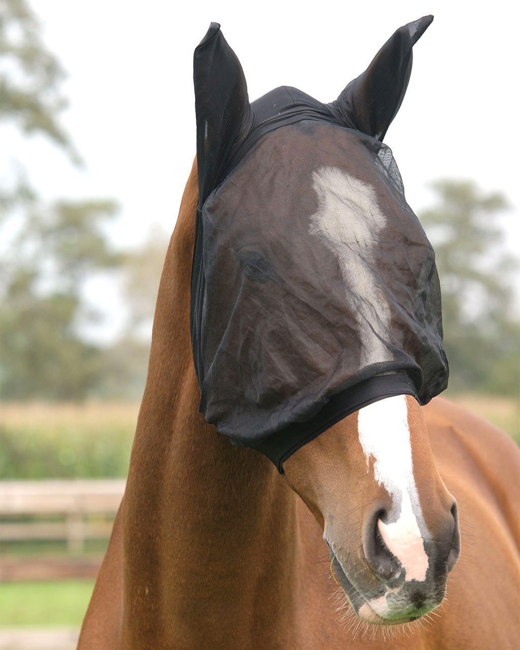 Fly Mask with Ear Protection Fine