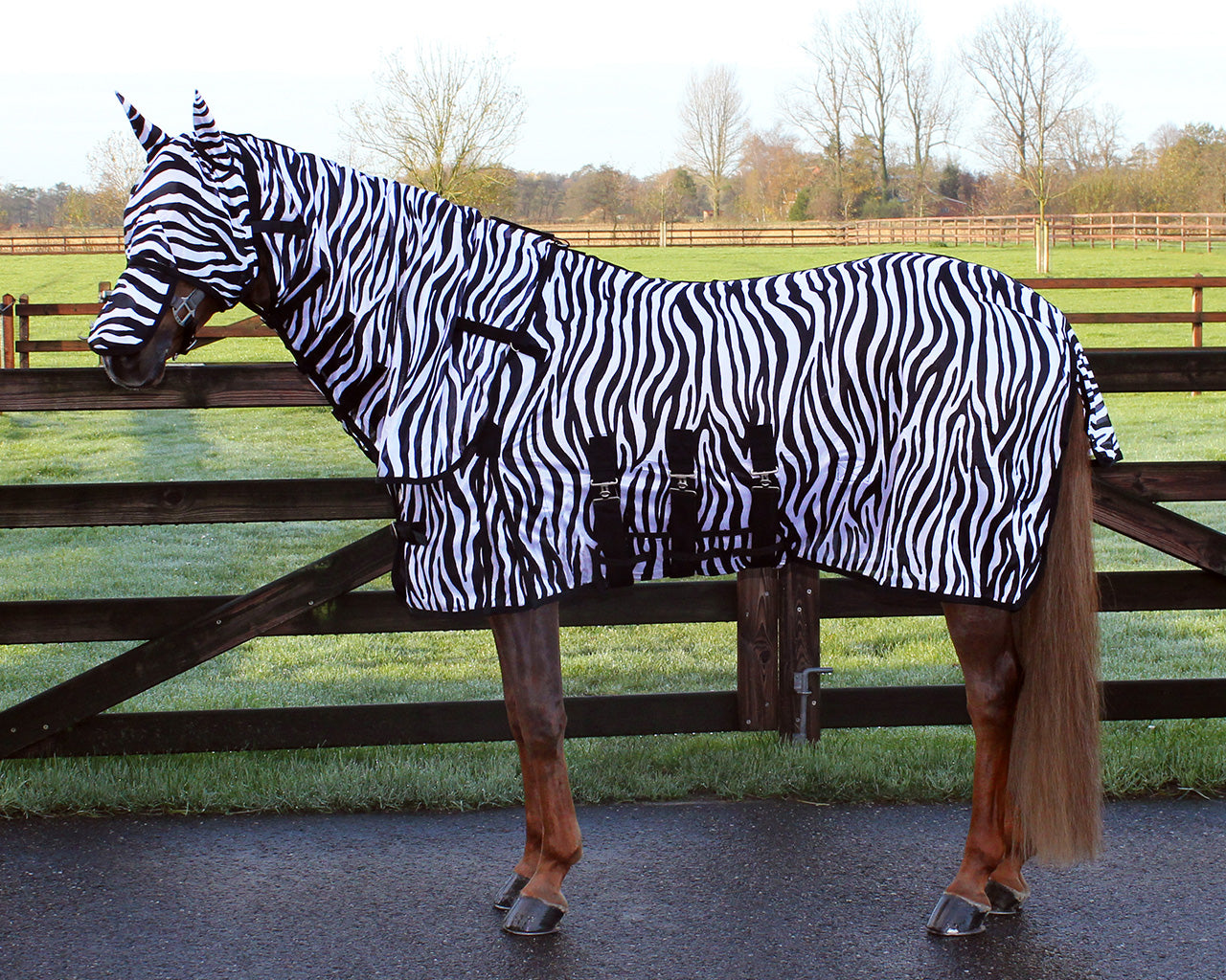 Anti-Fly Rug with Neck and Hood