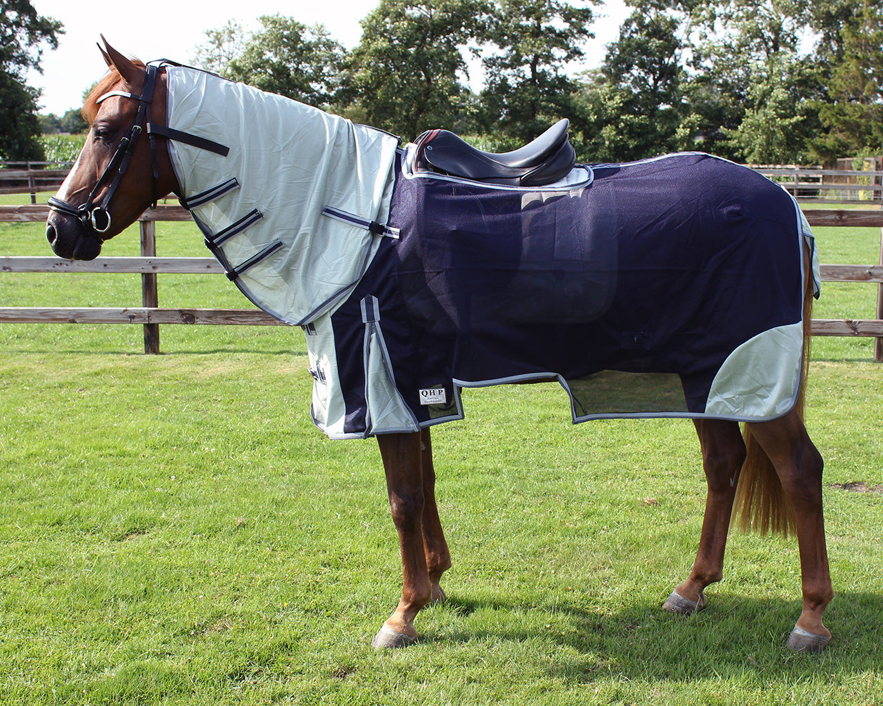 Exercise fly sheet with Neck