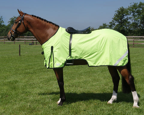 Ride On Reflective Rug