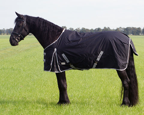Turnout Rug  XL / Heavy Horse 300g