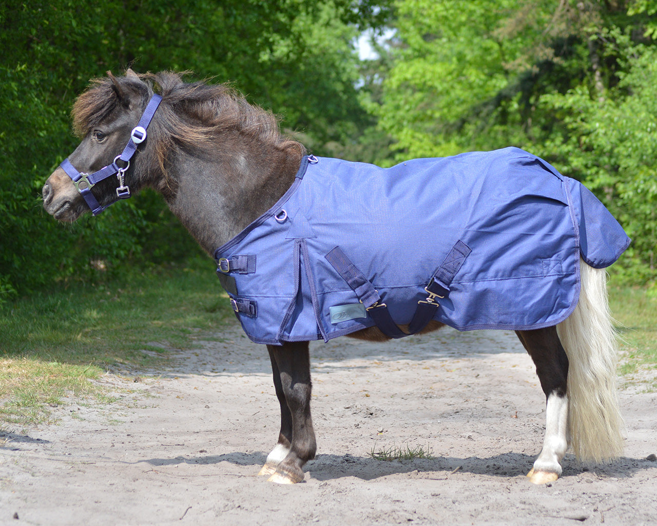 Falabella 0gm Lightweight Turnout Rug