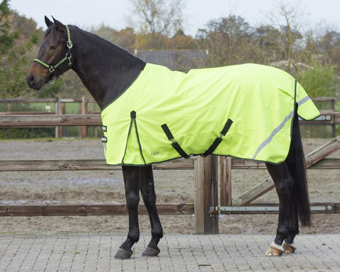 Reflection Lightweight Turnout Rug