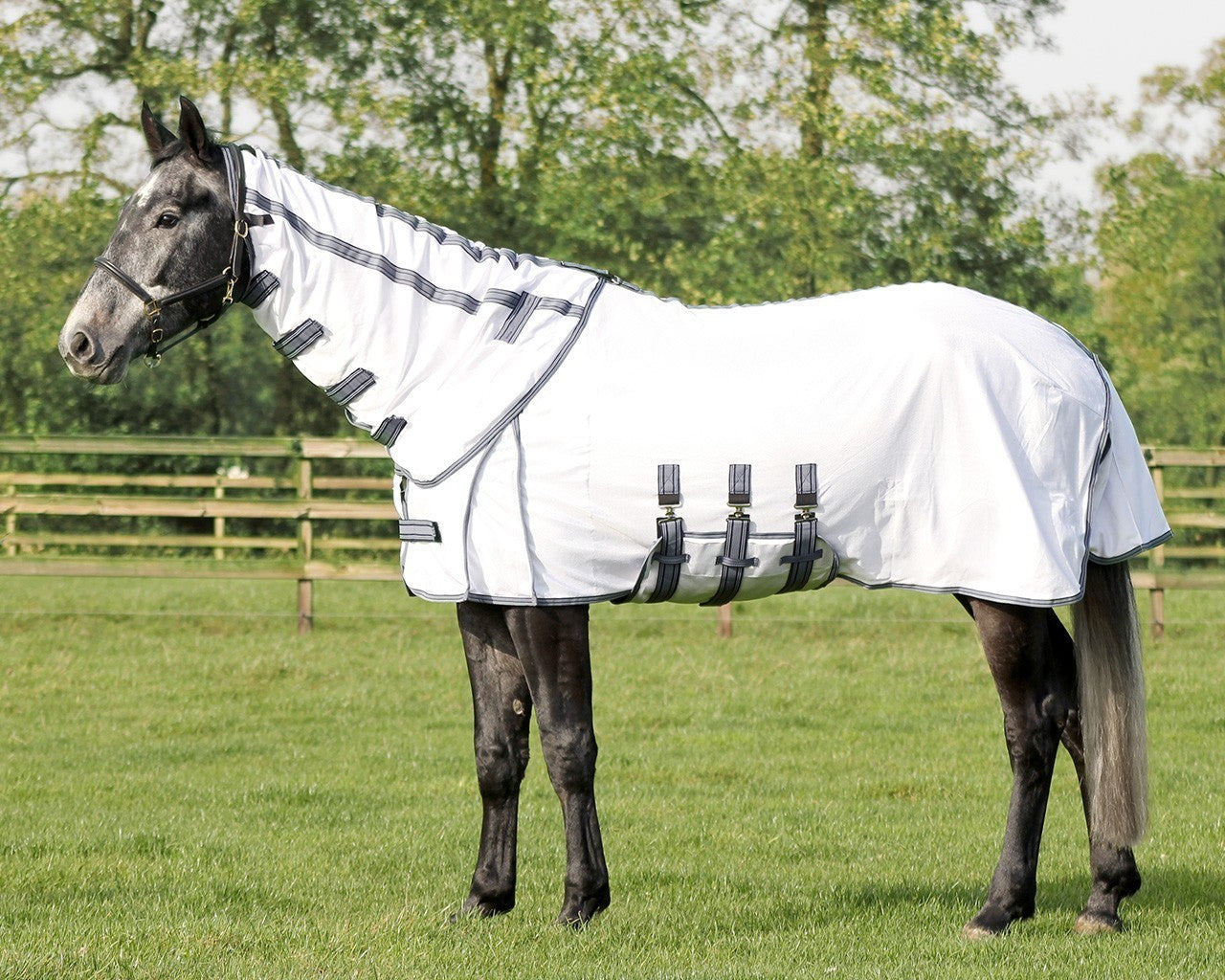 Fly Rug Detachable Neck