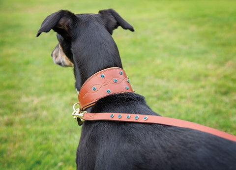 Digby & Fox Diamante Greyhound Collar