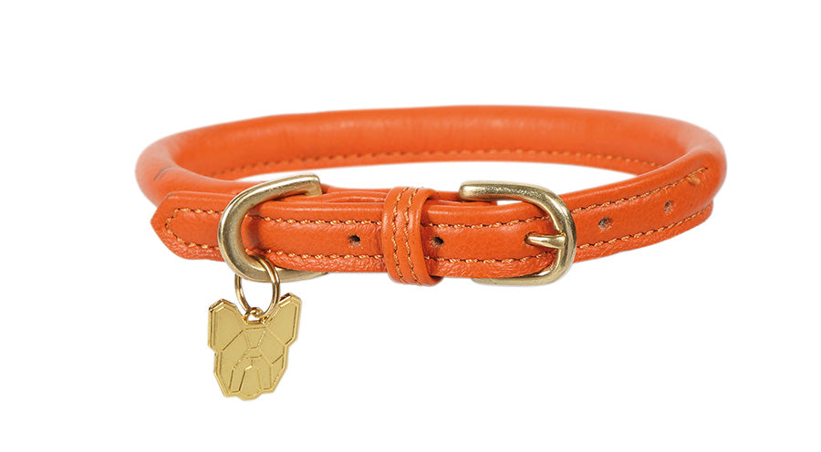Digby & Fox Rolled Leather Dog Collar