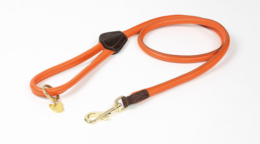 Digby & Fox Rolled Leather Dog Lead