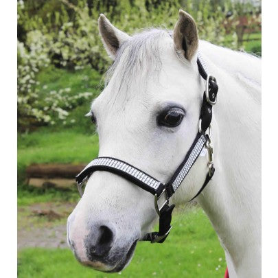 Gallop Diamante Padded Headcollar