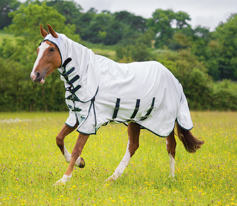 Shires Highlander Sweet-Itch Combo Fly Rug