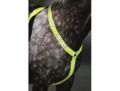 EQUI-FLECTOR Reflective Breastplate