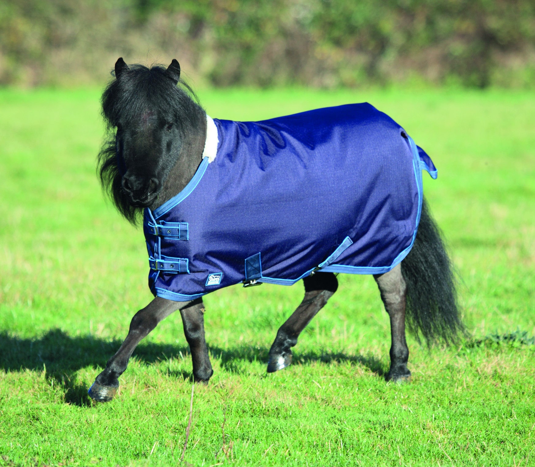 Shires Miniature Turnout Rug