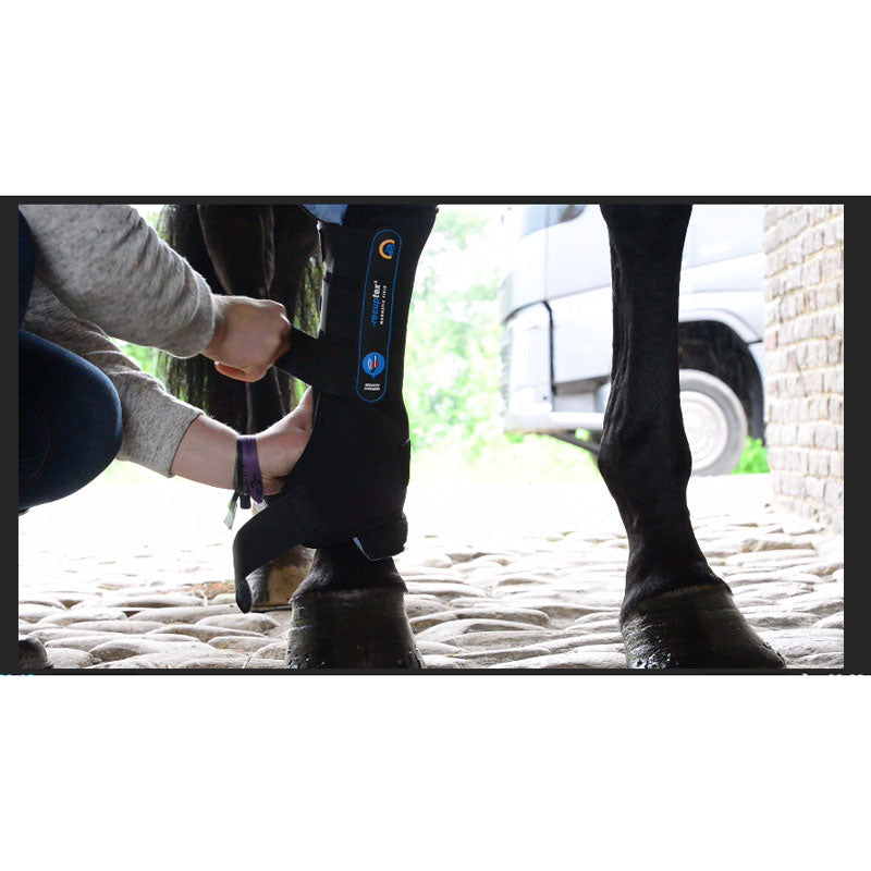 Kentucky Horsewear Magnetic Stable Boots