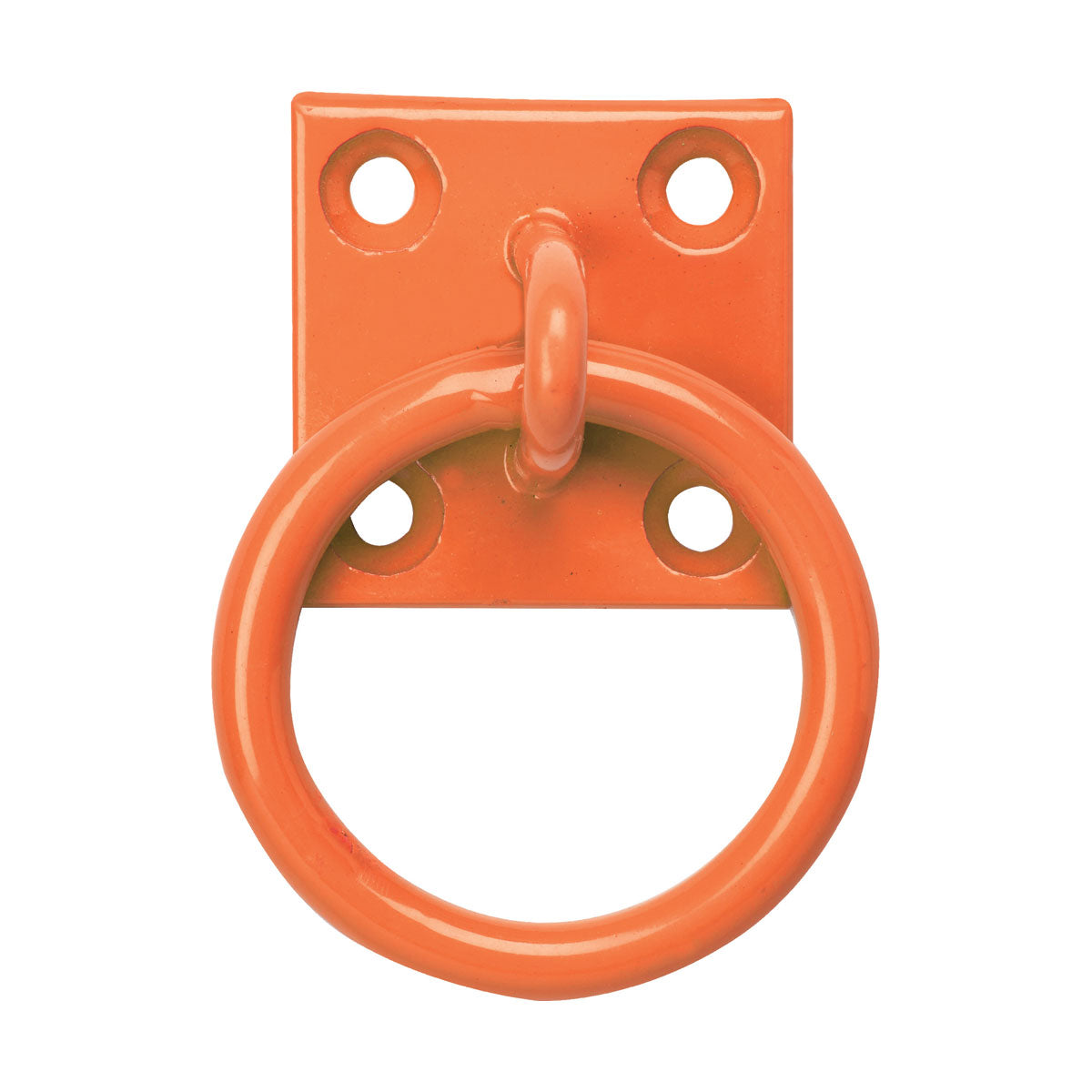 Chain Ring on Plate Pack of 2
