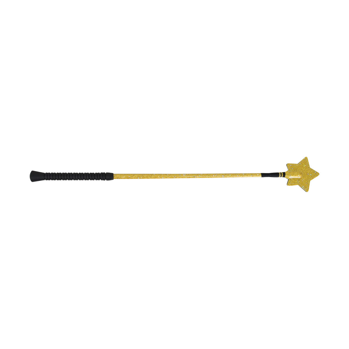 HySCHOOL Gold Star Riding Whip