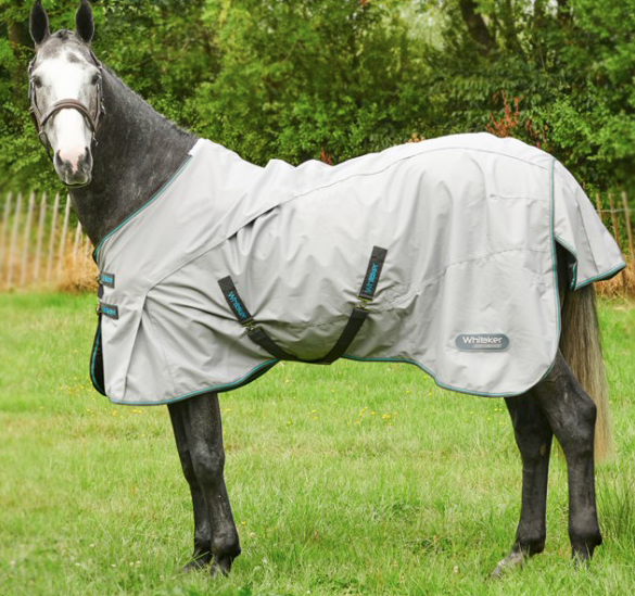 Buenos Aires Lightweight No Fill Turnout Rug