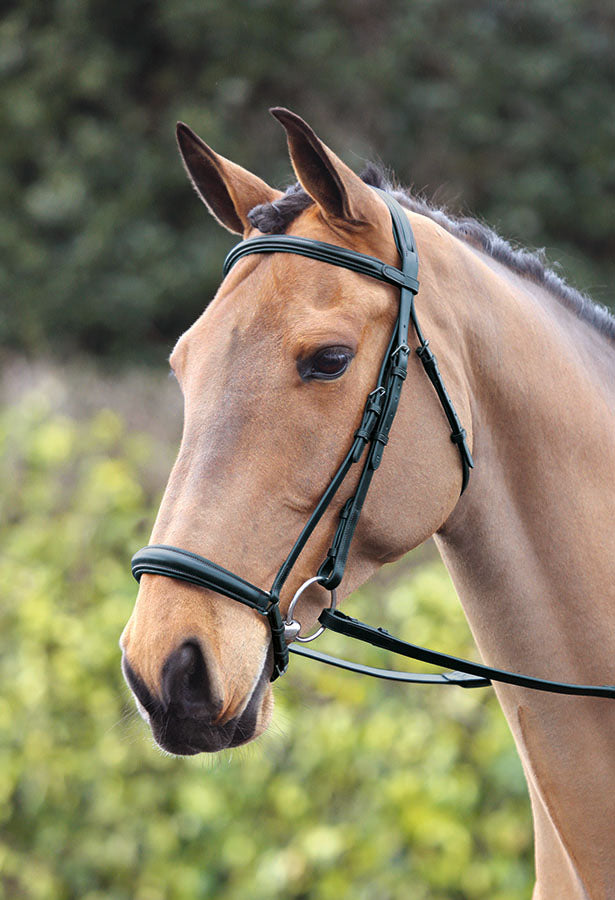 Lavello Bridle With Drop Noseband