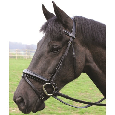 Mark Todd Patent  Flash Bridle