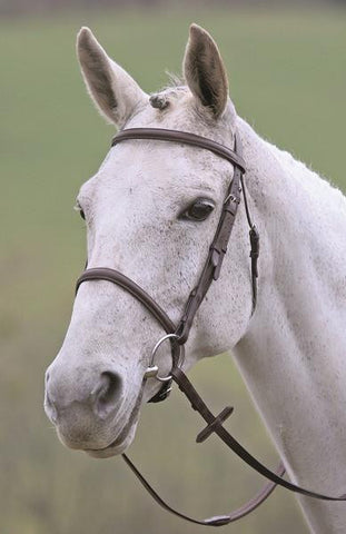 Bridleway Melton Raised Cavesson Bridle