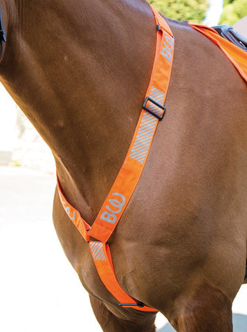 Bridleway Visibility Breastplate