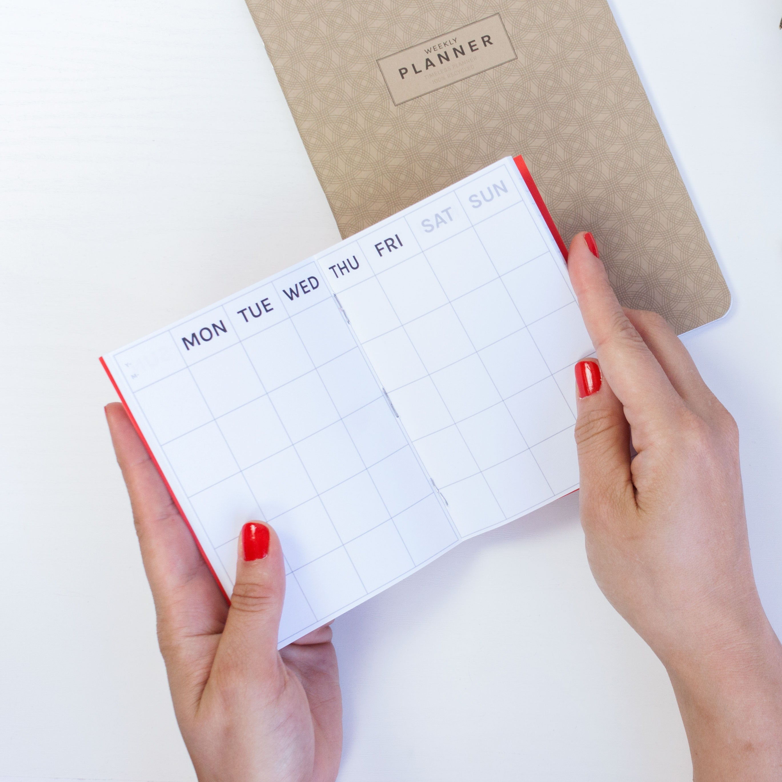 Planificador Timeless Monthly Planner | MINI, Planificadores, Octagon Design - Likely.es