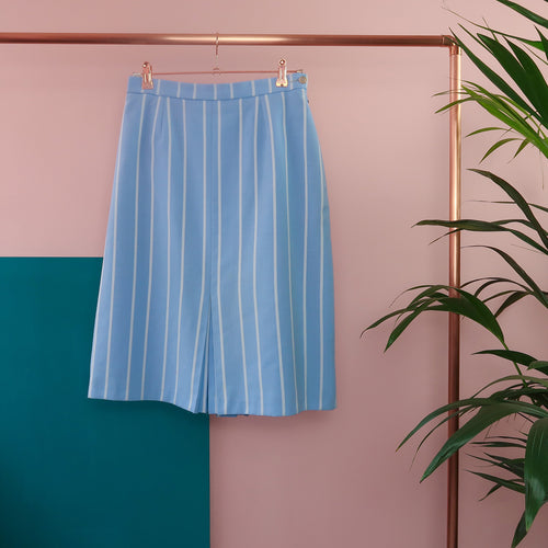 Blue Stripe A line Skirt