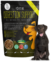 Digestion Support