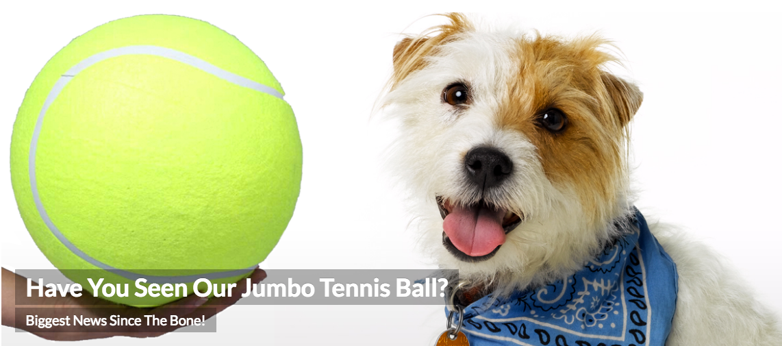 Jumbo Tennis Ball - JB Pooches