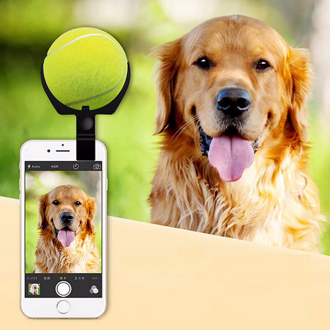 Pet Focus Ball Holder for Mobile Phones