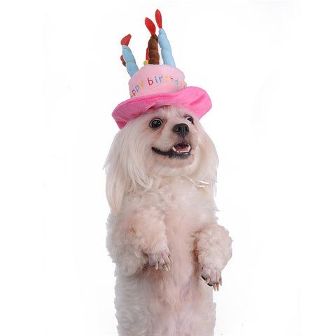 Hat For Dogs Happy Birthday