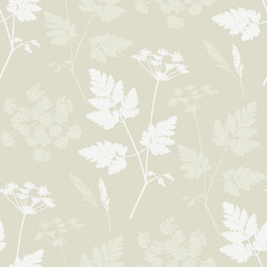 Cow Parsley Wallpaper- Somerset Stone - Meg Morton