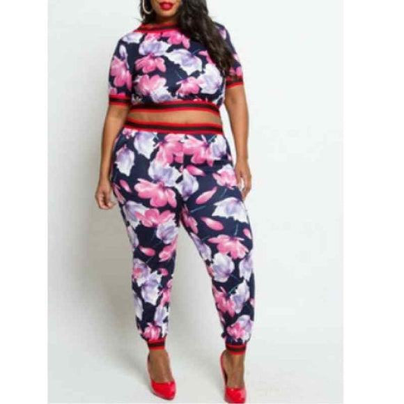 Plus Size 2pc Top And Pants Set