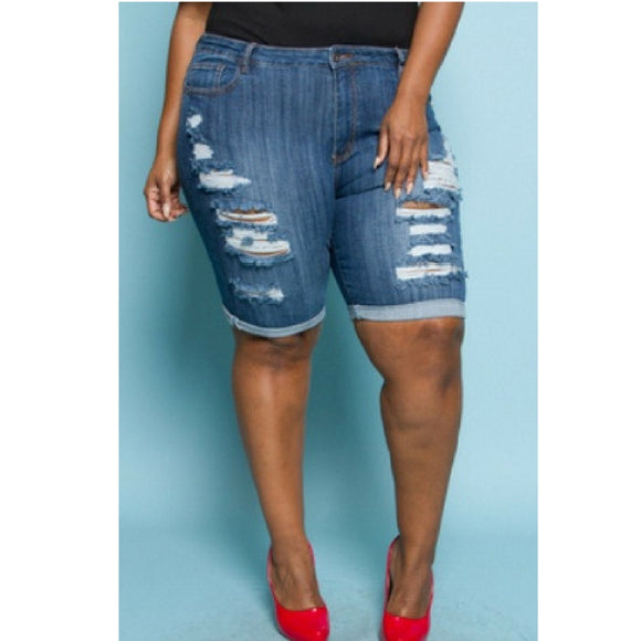 Plus Size High Waisted Shorts